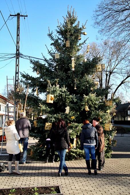 Megérkezett a város karácsonyfája Kondoros főterére