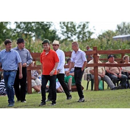 Polgármesteri-közéleti fogathajtó verseny a Lovas Nap keretében