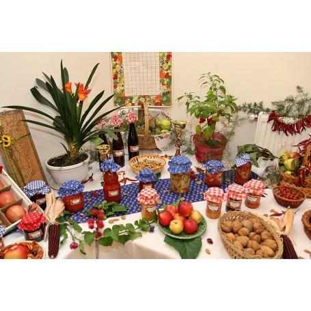45. születésnapját ünnepelte a Kondorosi Kertbarát Kör